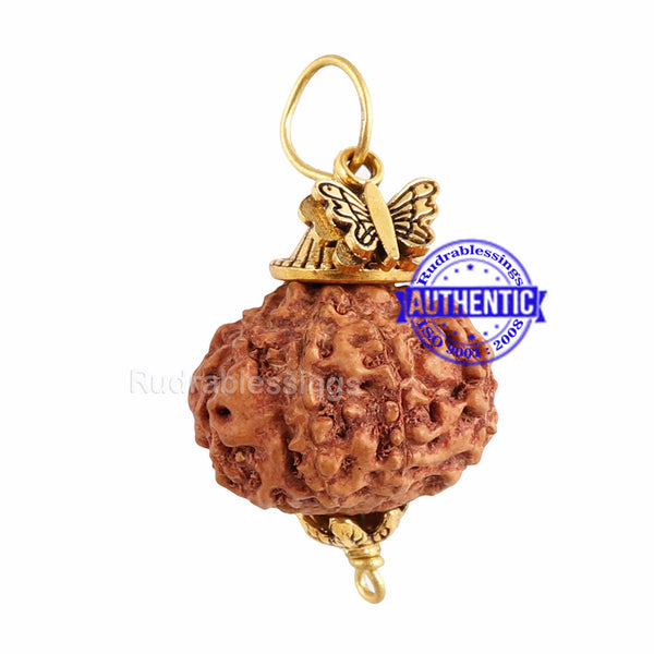 10 Mukhi Rudraksha from Indonesia - Bead No. 143 (with butterfly accessory)