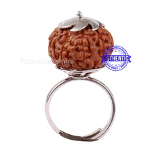 Load image into Gallery viewer, 9 Mukhi Indonesian Rudraksha Ring - 19