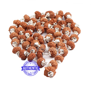 9 Mukhi with Ganesha Protrusion Mala - 54+1 (Pure Silver)