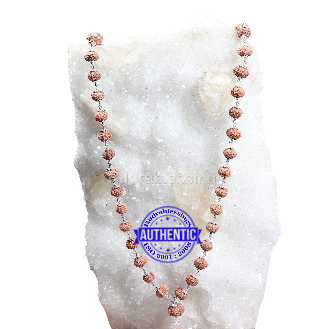 8 Mukhi with Ganesha Protrusion Mala - 54+1 (Pure Silver)