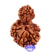 Load image into Gallery viewer, 8 Mukhi Nepalese Garbh Gauri Rudraksha with Ganesha - Bead No. 35