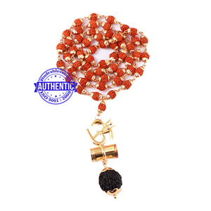 5 Mukhi Rudraksha Mala in gold plated caps with OM Pendant