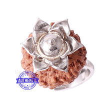 Load image into Gallery viewer, 7 Mukhi Indonesian Rudraksha Ring - 14