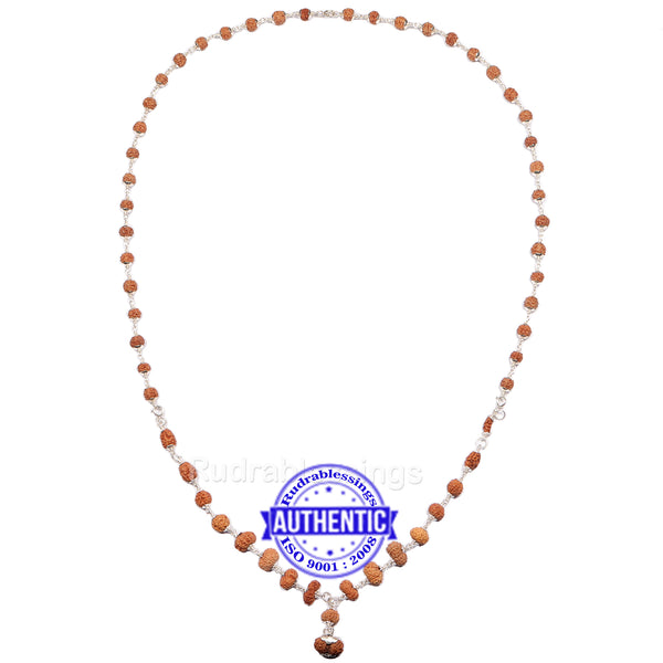 Rudraksha MahaSidhShakti Mala from Indonesia (Std size beads) - 1 (Pure Silver)