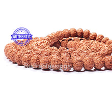 Load image into Gallery viewer, 9 mukhi Rudraksha Mala - Indonesian (54 + 1 beads) - 4