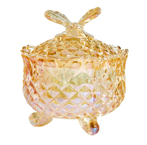 Designer Decorative Glass Container with Lid