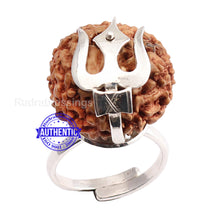 Load image into Gallery viewer, 10 Mukhi Indonesian Rudraksha Ring - 2