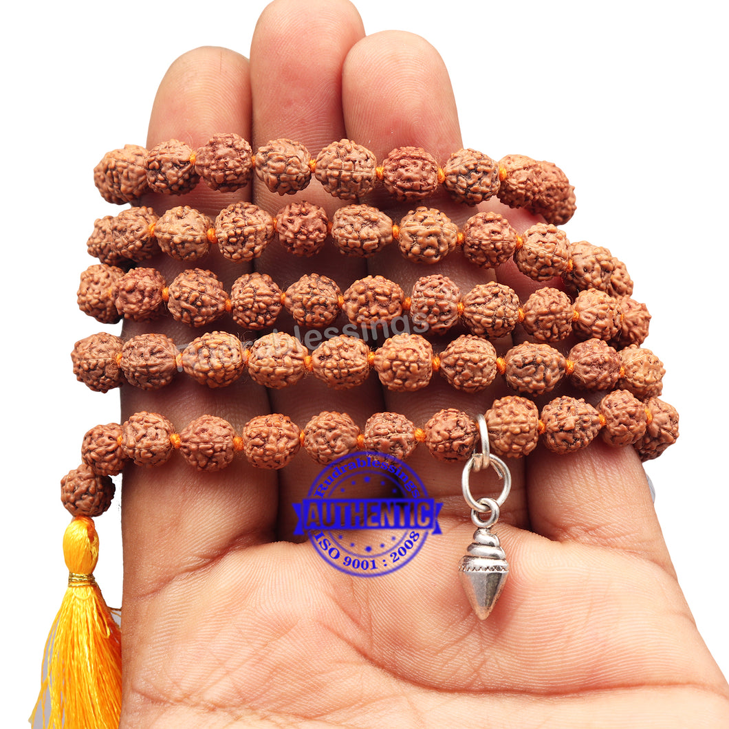 5 mukhi Rudraksha mala with Accessory Shankh