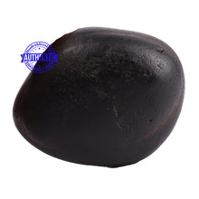 Load image into Gallery viewer, Santan Gopal Shaligram - 83