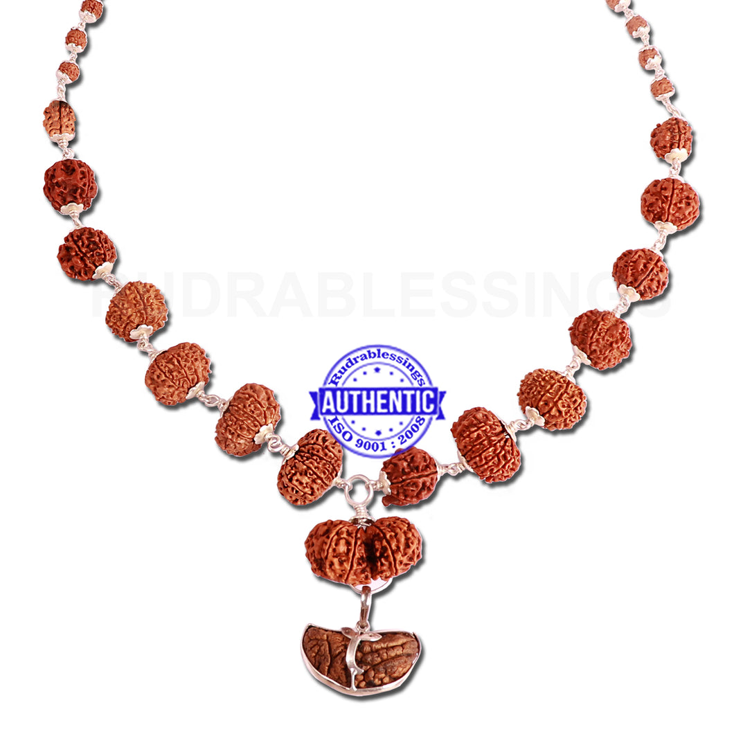 Rudraksha SidhShakti Mala from Nepal (Big size beads)
