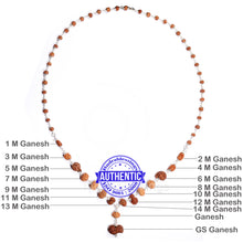 Load image into Gallery viewer, Ganesha Rudraksha SidhShakti Mala from Indonesia (Mini size beads) - 1 (Pure Silver)