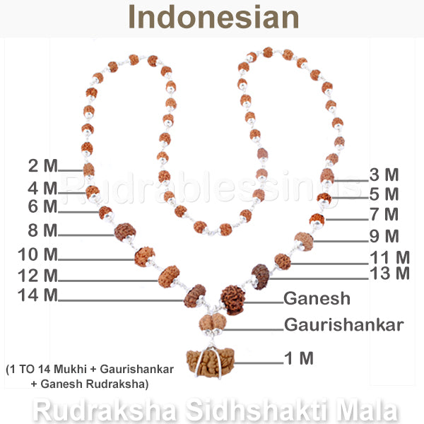 Rudraksha SidhShakti Mala from Indonesia (Mini size beads) - 1 (Pure Silver)
