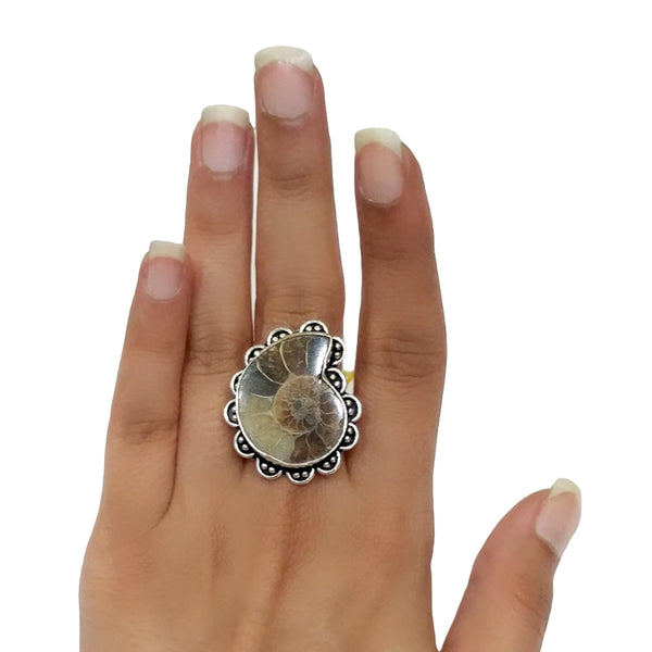 Ammonite Ring - 28