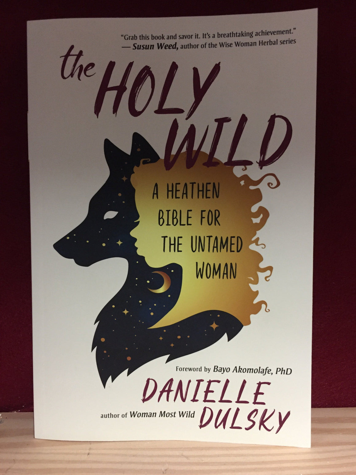 The Holy Wild by Danielle Dulsky