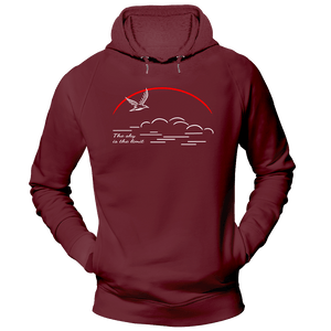 The sky is the limit | Organic Kapuzensweatshirt | Herren