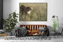 Laden Sie das Bild in den Galerie-Viewer, JUST ELEGANT | Poster & Leinwand