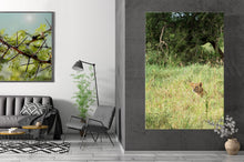 Laden Sie das Bild in den Galerie-Viewer, IN THE FIELD | Poster & Leinwand