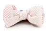 Isaac Bow Tie
