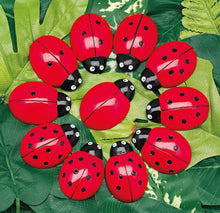 Load image into Gallery viewer, Ladybugs Counting Resources