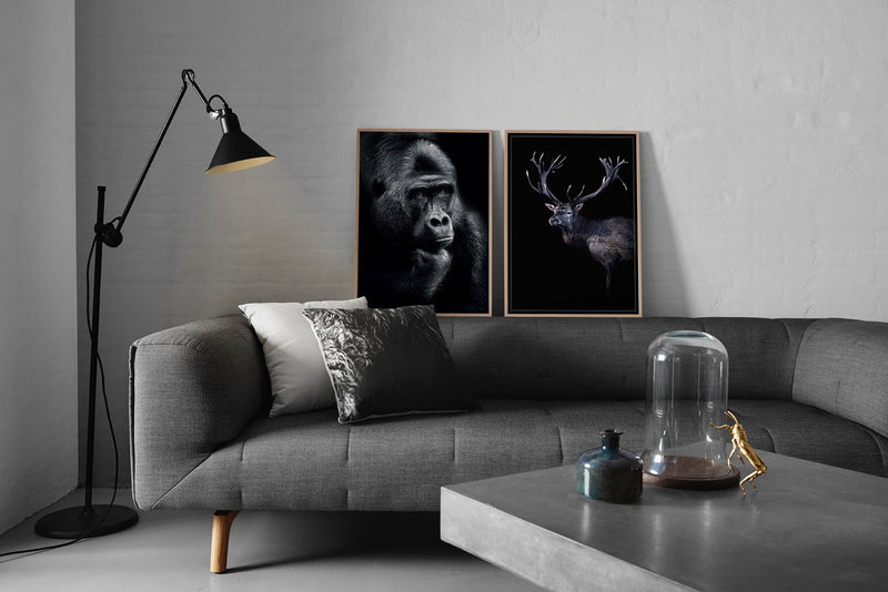 Gorilla Thoughts - 70x100cm