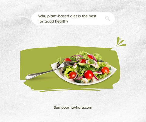 Why plant-based diet is the best for good health?
