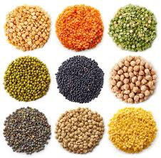 plant-based proteins