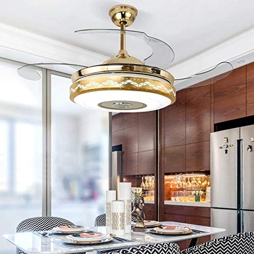 Modern Ceiling Fan and Lamp