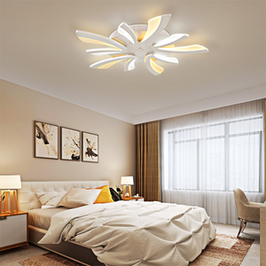 Modern LED Ceiling Lamp