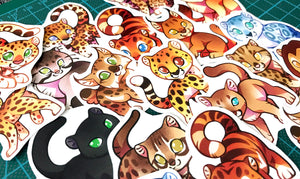 Cute Wild Cat Sticker Set