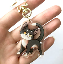 Load image into Gallery viewer, Tallstar Cat Keyring Charm
