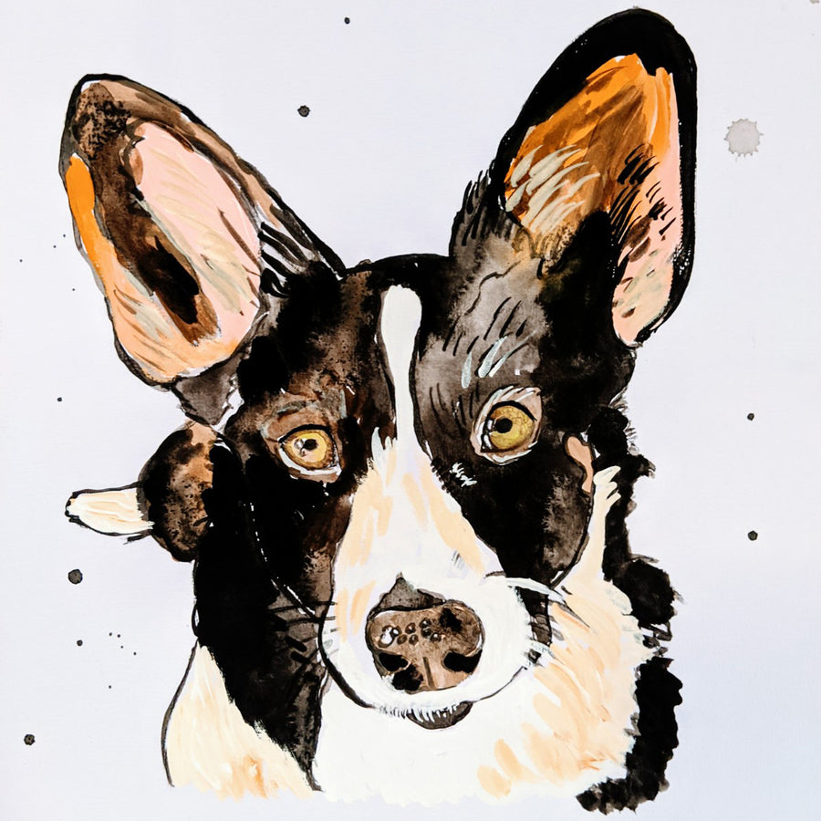 Illustrated Pet Portrait