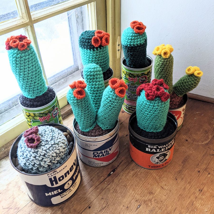 Triple Crochet Cactus with Orange Blooms in a Vintage Tobacco Tin
