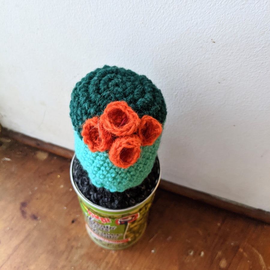 Two Toned Crochet Cactus with Orange Blooms in a Wasabi Peas Tin