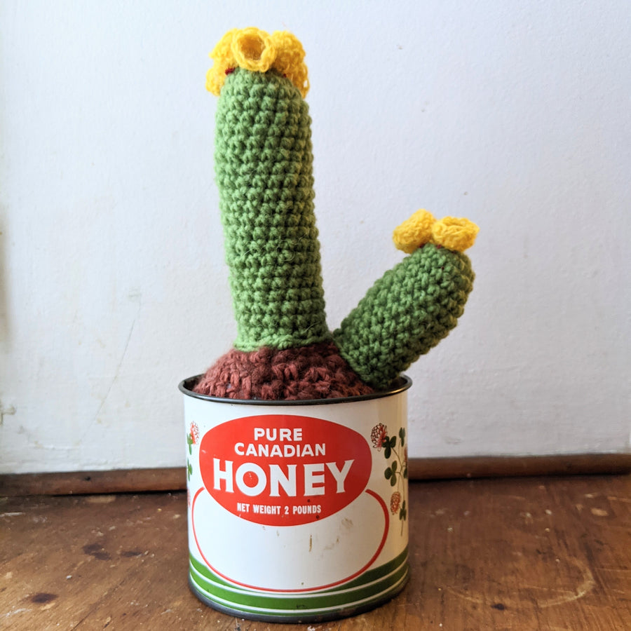 Double Crochet Cactus with Yellow Blooms in a Vintage Honey Tin