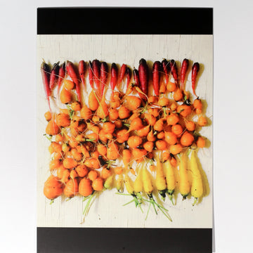 Carrot Gradient Postcard