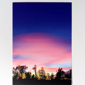 Cotton Candy Sunset Postcard