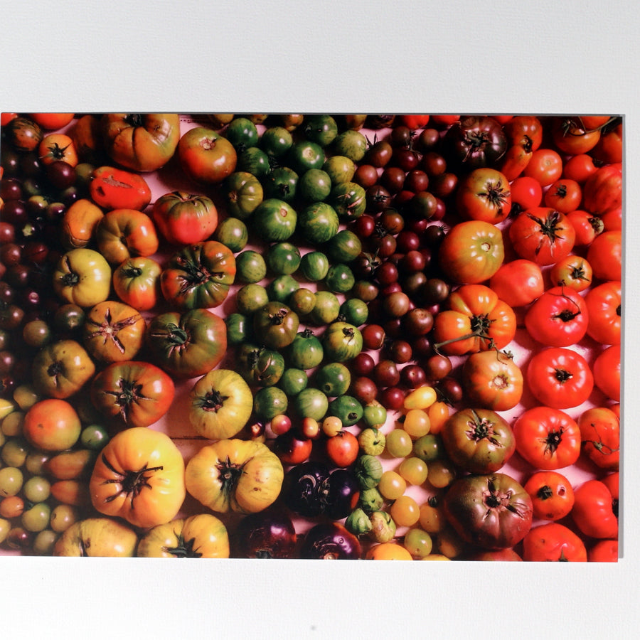 Heirloom Tomato Gradient Postcard