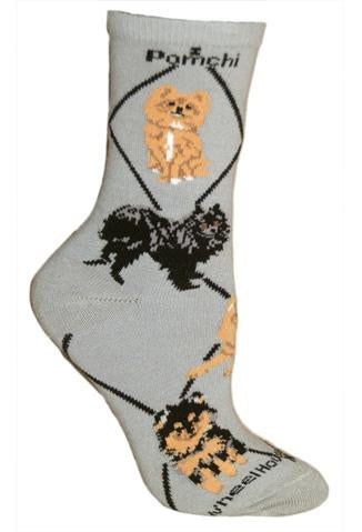 Pomchi on Gray Sock Size 9-11