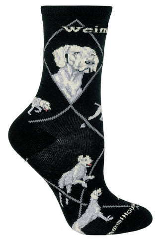 Weimaraner on Black Sock Size 9-11