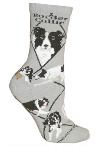 Border Collie on Gray Sock Size 9-11