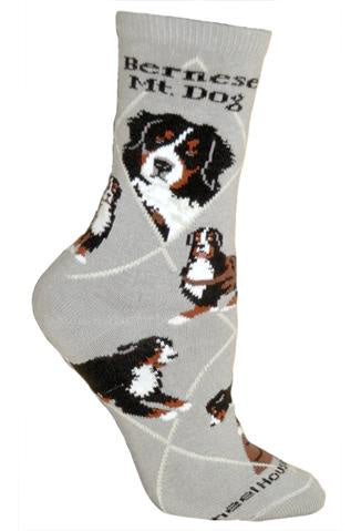 Bernese Mountain Dog on Gray Sock Size 10-13
