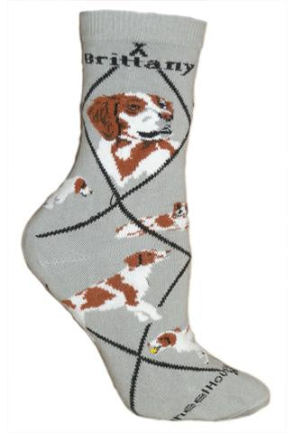 Brittany Spaniel on Gray Sock Size 10-13