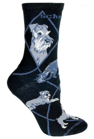Schnauzer on Black Sock Size 9-11