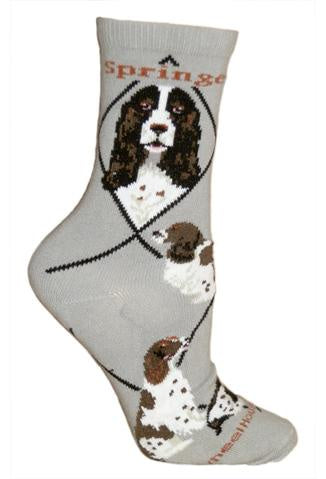 Springer Spaniel on Gray Sock Size 10-13