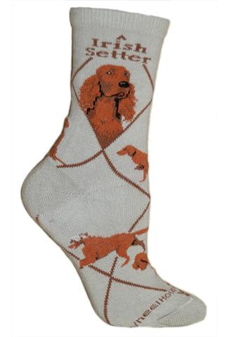 Irish Setter on Gray Sock Size 9-11