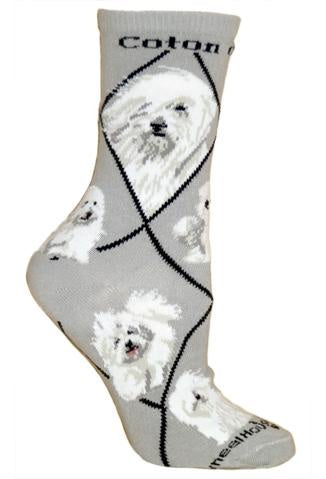 Coton deTulear on Gray Sock Size 10-13
