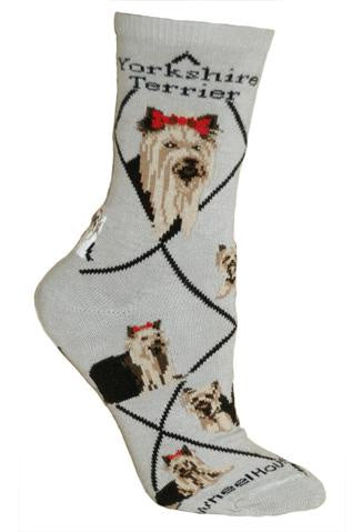 Yorkshire Terrier on Gray Sock Size 9-11