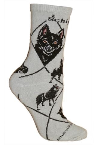 Schipperke on Gray Sock Size 9-11