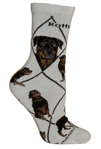 Rottweiler on Gray Sock Size 9-11