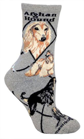Afghan Hound on Gray Sock Size 10-13